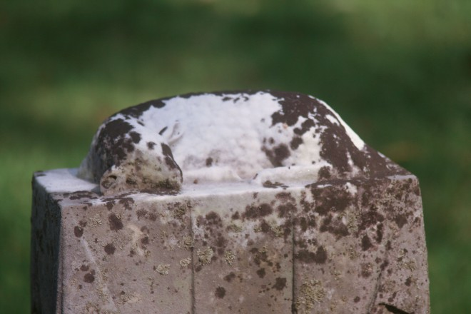 photo of a child's grave marker with a sleeping lamb