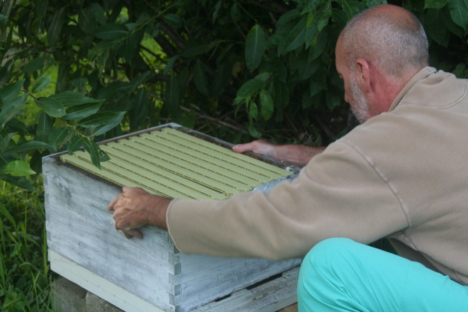 photo of a beekeeper preparing a new bee box